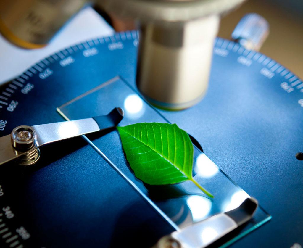 microscopio-airtek